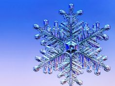 Closeup snowflake photograph. Buy the book for $11.56.