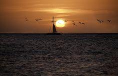 Key West Sunset by Paul Plaine