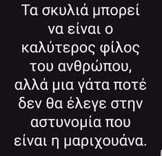 Funny Greek Quotes, Funny Quotes, Stupid Funny Memes, Lol, Humor, Happy, Cats, Funny Phrases, Gatos