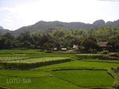 Rando Mai Chau Vietnam – Cette excursion de 3 jours au départ de Hanoi vous permettra d'avoir une journée de trek à Mai Chau
