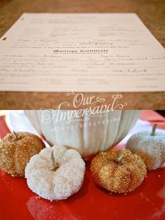 Mini White pumpkins glazed! I used white pumpkins and rolled them in modge podge and then rolled them in tiny beads! Fall wedding ideas