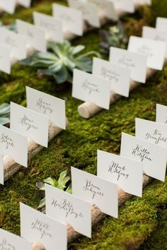 Calligraphed escort cards on a bed of moss | Photo by Sarah Tew