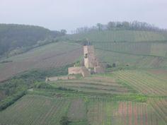 Château du Wineck à Katzenthal
