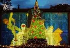 読むたびに味わいを増す不朽の名作『星の王子さま』。その世界観と作者サン=テグジュペリをテーマにしたミュージアムが箱根にあります。その「星の王子さまミュージアム 箱根サン=テグジュペリ」がひときわ輝きを増すのがクリスマスシーズン。イルミネーションやクリスマス装飾はまるでおとぎ話の世界のような可愛さ。ここではイルミネーション「ロマンティック・スターリー・ナイト」を中心に、冬の見どころをご紹介します。