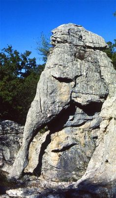 A petrified Elephant. Cool Rocks, Beautiful Rocks, Mother Earth, Mother Nature, Nephilim Giants, Nature Landscape, Turn To Stone, Mysterious Places, Rock Formations