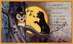 """Vintage Halloween postcard showing a somewhat fraught cat screeching a warning to the wide-eyed owl in the tree: """"Beware! Take care! For Ghosts are seen on Halloween. Black Cat Halloween Costume, Halloween Facts, Halloween Owl, Holidays Halloween, Happy Halloween, Halloween Pictures, Halloween Ideas, Halloween Stuff, Retro Halloween"""