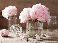 beautiful pink peony flowers bouquet in vase by duskbabe. beautiful pink peony flowers bouquet in vase Flowers In Jars, Cut Flowers, Flower Vases, Pink Flowers, Flower Arrangements, Flower Table, Fresh Flowers, Peony Flower Meaning, Flower Meanings