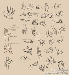 Hands are always so hard for me to draw #drawing tutorial  Hand ideas to have a go at sketching. Practice makes perfect or something like that.