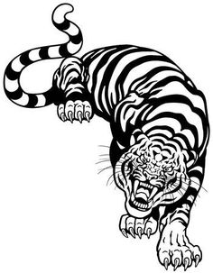 angry tiger, black and white tattoo illustration