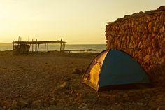 Dihamri Marine Protected Area (Socotra Island, Yemen): Top Tips Before You Go - TripAdvisor