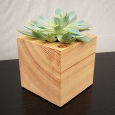 Cactus Planter, Cube Shaped, from Reclaimed Wood. $21.00, via Etsy.