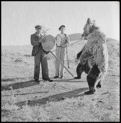 https://flic.kr/p/Ghufag | Αρκουδιάρηδες, 1950 - 1960. Βούλα Παπαϊωάννου, Φωτογραφικό Αρχείο Μουσείου Μπενάκη.