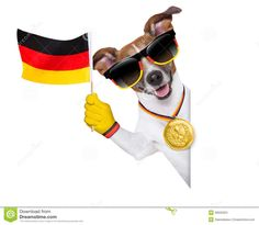 Germany World Cup 2014 dogs with flag | Fifa world cup german dog waving flag behind banner.