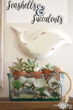 Beach Decor DIY in under 5 minutes.  A distress painted wooden bowl fish with…