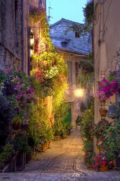 Street in Spello, Italy