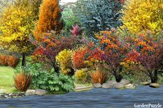 Calling for Fall - GardenPuzzle - online garden planning tool