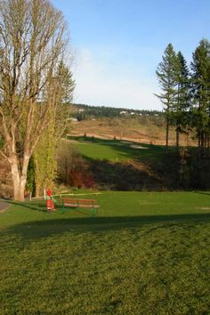 Fort Steilacoom Golf Course   Washington Golf     Playing the     Fort Steilacoom Golf Course   Washington Golf     Playing the Evergreens    Pinterest   Golf  Lakes and Western washington