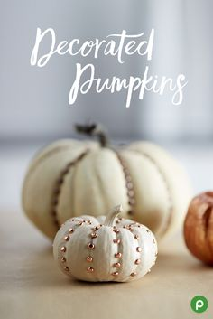 Who wouldn't want pretty pumpkins on their Thanksgiving table? This is an easy craft to make with your family. All you need is paint and metal brads to turn simple squash into gorgeous gourds.