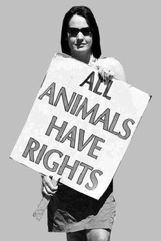 Celeste Vania ♥: All animals have rights