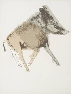 'Wild Boar', Dame Elisabeth Frink | Tate  #animals #lithography #print