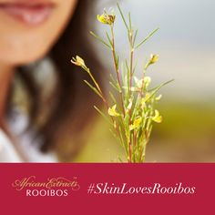 Healthy Skin, Disorders, Anti Aging, Skin Care, Skincare, Healthy Skin Tips, Skin Treatments