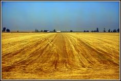 רכבת. חלון מלוכלך. שדות קצורים. זהו. התחיל הקיץ. Country Roads, Landscape, Places, Painting, Art, Art Background, Scenery, Painting Art, Kunst