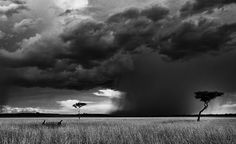 scary rain storm - Google Search