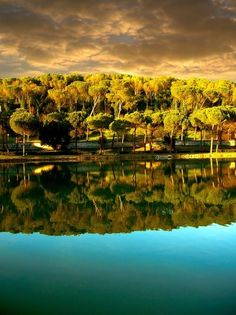 Reflection, Villa Ada, Rome, Italy photo via lisa by JustLinnea