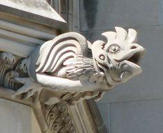 Washington National Cathedral Gargoyles: Rooster Under Attack