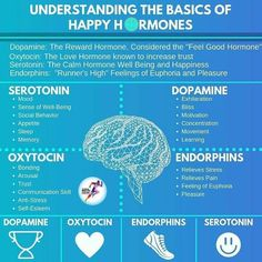 brain health Understanding the basics of the four happy hormones! Do you need help elevating these happy hormones naturally I did too! But not anymore thanks to my happy coffee Visit below to learn more! Health And Nutrition, Health And Wellness, Health Tips, Health Articles, Nutrition Education, Brain Facts, Brain Science, Brain Gym, E Mc2