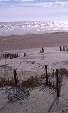 Nothing restores my soul like a secluded beach.  Tybee Island, GA