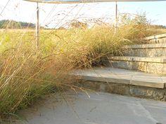 Schody z naturalnego piaskowca- Rozdziele- BS Ogrody
