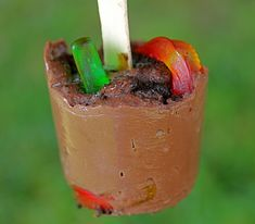 Frozen dirt n'worms, fun idea and different from the traditional