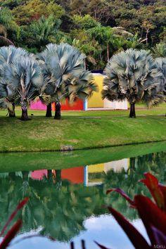 Instituto de arte contemporânea de Inhotim - Brazil