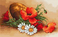 Flores de campo - Amapolas
