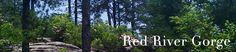 Red River Gorge online - maps, flora & fauna, natural bridge history, etc.