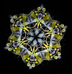 日々 | 細井厚子の万華鏡 透明な花