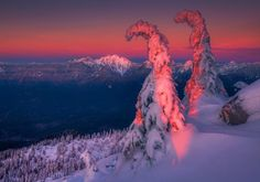 Layered Gracefully by Trevor Anderson on 500px