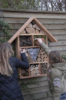 How to build an insect hotel. Garden Bugs, Garden Insects, Garden Animals, Garden Deco, Bug Hotel, Mason Bees, Sensory Garden, Plantation, Hotels