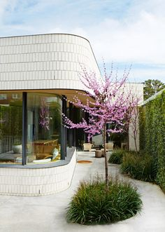 Rear exterior of the house. White brick façade, the tree is an Eastern Red Bud (Cercis Canadensis). Photo - Sean Fennessy, production – Lucy Feagins / The Design Files. Architecture Renovation, Brick Architecture, Residential Architecture, Ancient Architecture, Sustainable Architecture, Landscape Architecture, Brick Facade, Facade House, Terrazzo
