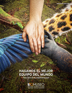 Biomuseum - biodiversity day on Behance- Biomuseo – día de la biodiversidad on Behance cool Biomuseo – biodiversity day on Behance … - Creative Advertising, Ads Creative, Advertising Design, Contextual Advertising, Advertising Campaign, Creative Poster Design, Creative Posters, Earth Day Posters, Plakat Design