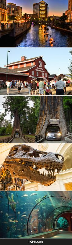 Plan Your Next Family Road Trip Across America Around These 49 Attractions