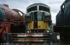'Ark Royal' at Woodham's Yard, Barry, on August Barry Scrapyard -- England Abandoned Train, Abandoned Cars, Abandoned Places, Abandoned Vehicles, Electric Locomotive, Diesel Locomotive, Steam Trains Uk, Heritage Railway, British Rail