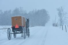 Amish Buggy, New Wilmington, Lawrence County