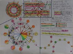 music notes on a clef forming a circle and converting 12 chakra colors to 4 colors DNA base pairs using music staff Chakra Colors, Infinity Symbol, Mirror Image, Music Notes, Dna, Surrealism, Bullet Journal, Pairs, Base