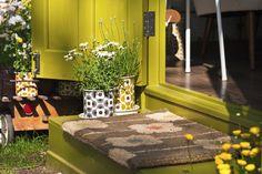 Verde oliva na decoração: aposte na cor para uma casa de atitude - Casa - GNT