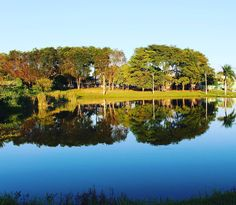 Se vc não sabe o que é a sua paz como vai saber onde deve procurar por ela ? #landscape #photooftheday #nature #naturephotography #natureporn #naturelove #natureza #outdoors #brazil #laguna #trees #wood #clickfoto #canonphotography #saturday #goodmorning #catalao #goiásémais