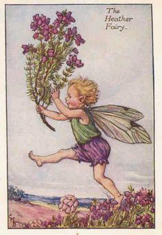 Fairy The Heather Fairy, by (CMB) Cicely Mary Barker, 1925