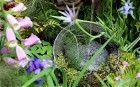 Potter's Garden, with soldier's helmet water feature,t the Chelsea Flower Show 2014