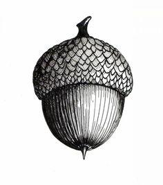Acorn Gallery School of Art Botanical Drawings, Botanical Art, Botanical Illustration, Acorn Drawing, Acorn Tattoo, Tree Photoshop, Wood Burning Art, Ink Illustrations, Pen Art